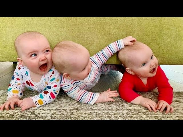 Cutest Triplets Baby Make you LAUGH super HARD 🐣🐣🐣 Funny Babies and Pets