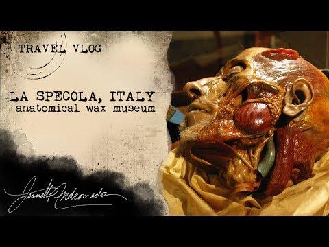 TRAVEL VLOG - Europe's Oldest Anatomical Wax Museum - ft. MADELEINE SWANN