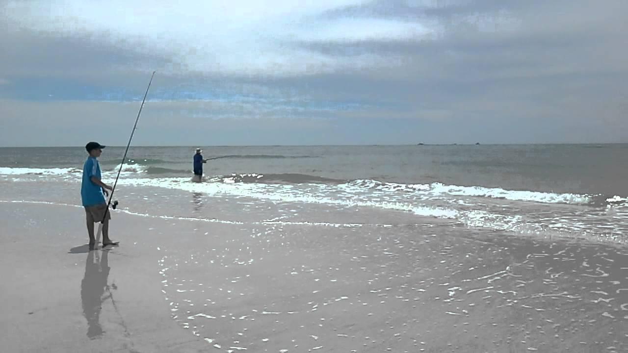 Anna maria island fishing tips-5495