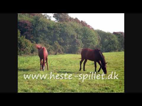 heste spil online gratis