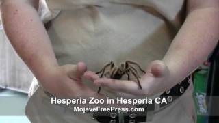 Exotic Animals in the Mojave Desert  (MojaveFreePress.com)