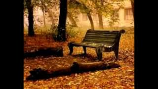 september song milan komnenić piano roland rd 700 nx recorded live on first take