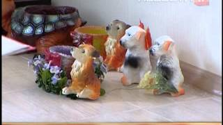 Легальное кладбище для животных появилось в Екатеринбурге