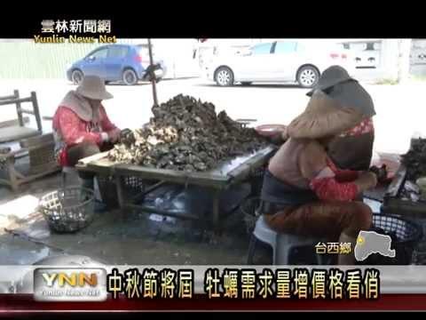 臺西牡蠣中秋節價格看俏