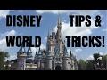 Disney World Tips & Tricks: First Visit Ultimate Guide