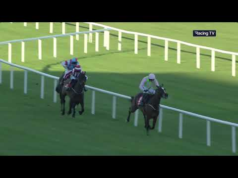 Leopardstown Highlights 2nd February 2019