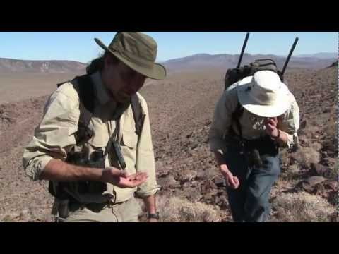 James Sims | Video Demo Reel 2011-12