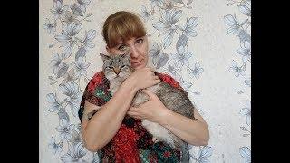 Пожертвовала отпуском... ради спасения кота.../вязание в конце