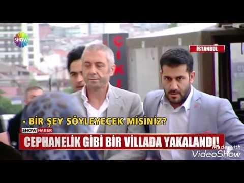 Reis Sedat Şahin 2017