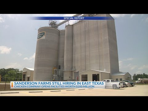 Sanderson Farms Still Hiring, Becomes One Of East Texas' Largest Employers