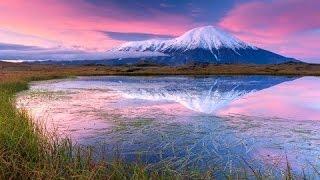 Дикая природа Аляски.
