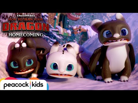 Surprise Visitors in New Berk  | HOW TO TRAIN YOUR DRAGON - HOMECOMING