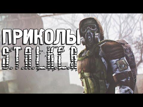 сталкер картинки приколы | ВКонтакте | 360x480