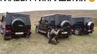 Охрана главы Ингушетии. Служба безопасности Евкурова.