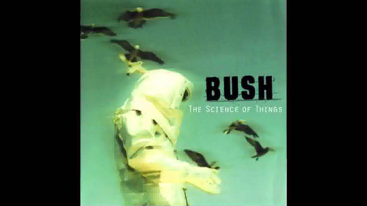 bush-warm-machine-ryan-roymega