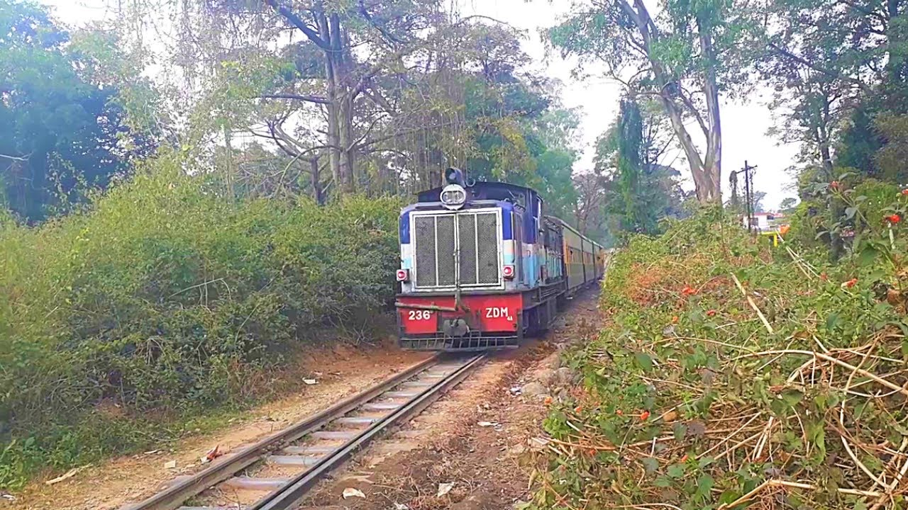 Narrow Gauge Train - Indian Railways