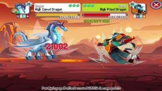 Dragon City Heroic Race: High Comet Dragon 1st | High Comet Dragon Egg Review And Level Up + Combat!
