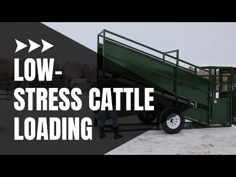 Cattle Loading Chute | Cattle Equipment | Arrowquip