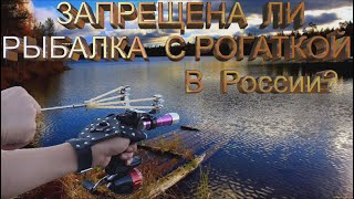Разрешена ли в России рыбалка с РОГАТКОЙ или охота с рогаткой на рыбу Разберём этот вопрос
