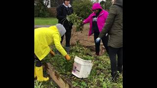 Download Video Community and Kindness Day 2018- Buckhannon WV  Trailer MP3 3GP MP4