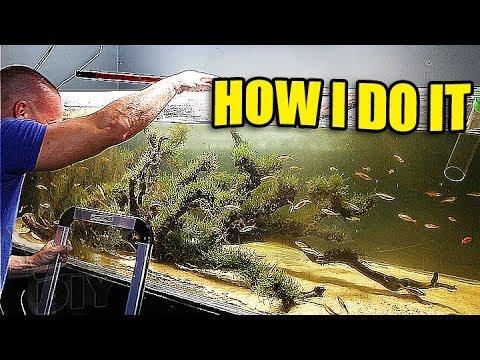 375G aquarium cleaning