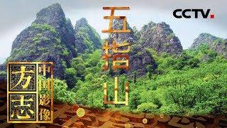 《中国影像方志》 第250集 海南五指山篇| CCTV科教