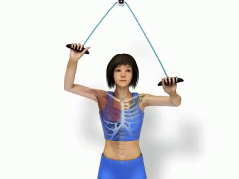 ... Shoulder Pulley Stretch Exercise ...