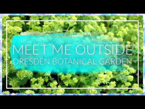 Meet Me outside: Dresden Botanical Garden Art Trip