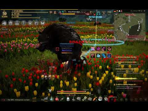 BDO Hunting Guide: Balenos Islands Leveling Locations (Black