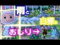 【ポケ森】白樺とレイニー君とおしり【スピルのレイアウト紹介#91】