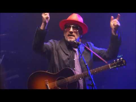 Elvis Costello & Imposters @ Blenheim Palace, Oxford 16th June 2018