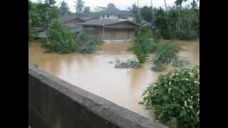 น้ำท่วม อ.คีรีรัฐนิคม