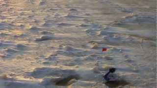 Ловля щуки на жерлицы зимой на Ладоге.