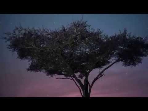 Musica Relajante Étnica sabana de Africa -  RELAXING AFRICAN SAVANNAH ETNICA MUSIC