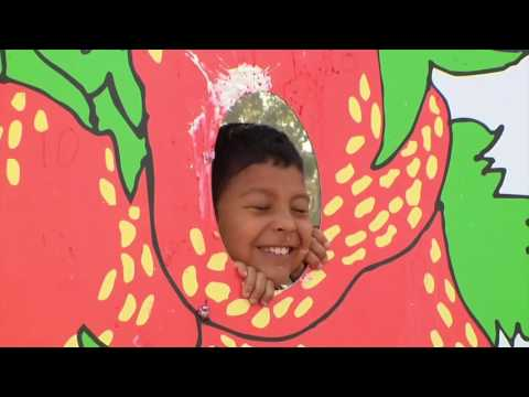 California Strawberry Festival 2016