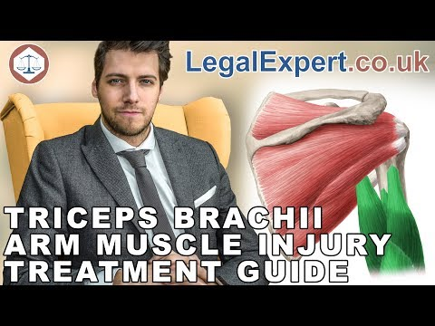 Triceps Brachii Arm Muscle Injury Treatment Guide ( 2019 ) UK