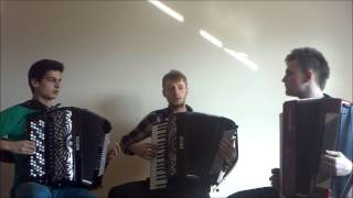 Crazy Accordion Trio - He's a Pirate