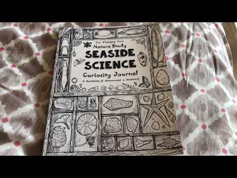 Seaside Science Journal by The Thinking Tree