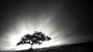 Leo Abrahams - Below Ground