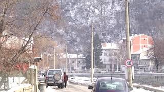 Бяла чапла и бекас в Дупница