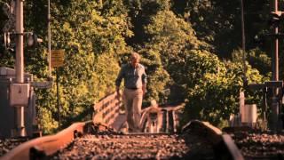 Hachi A Dog 39 s Tale Trailer