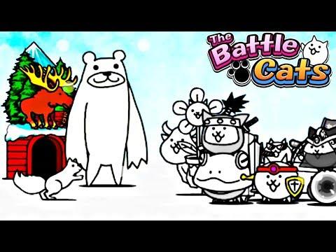 KOTY VS NIEDŹWIEDZIE POLARNE! | THE BATTLE CATS #admiros