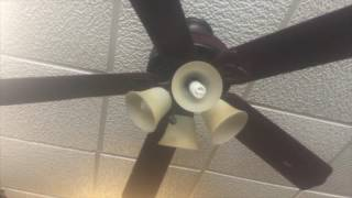 """52"""" Hampton Bay Hugger, and Hunington III Ceiling Fans at Place to Be Deli Restaurant!"""