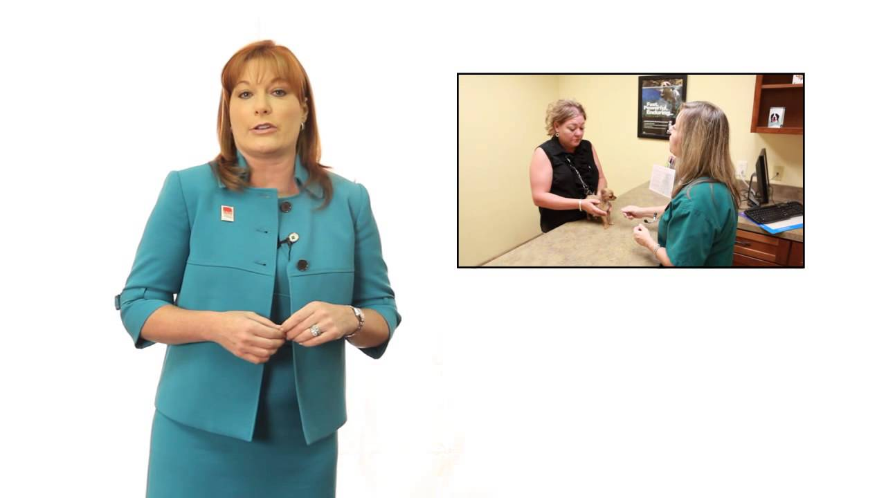 Veterinary Practice Tip - Importance of the Business Card - YouTube