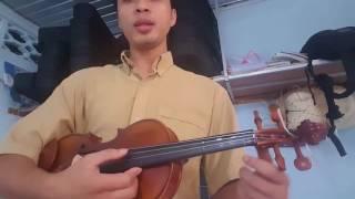 Hướng dẫn violin bài tình lỡ cách xa - phong cách mì ăn liền