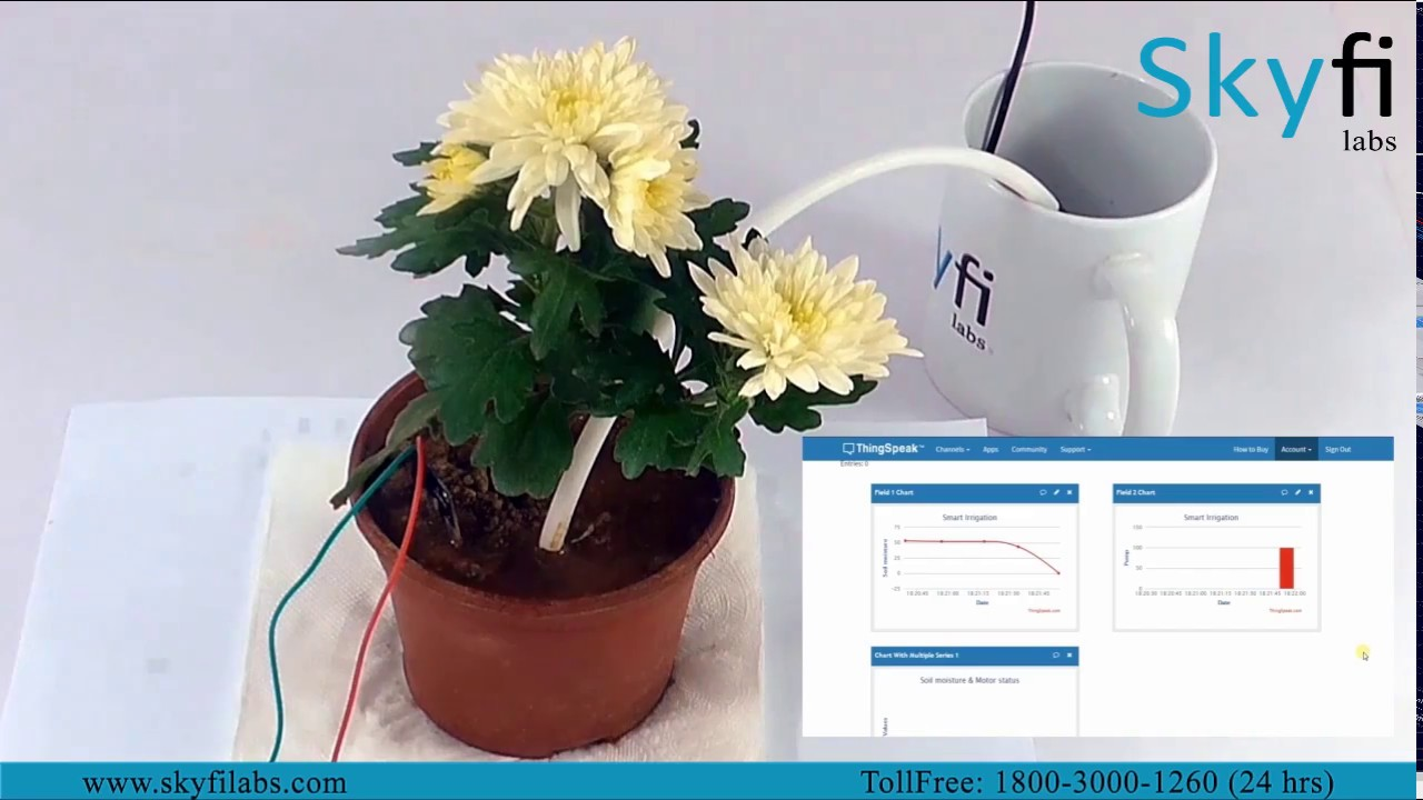 Learn to build an IoT Project on Smart Irrigation System - Skyfi Labs
