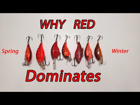 Why Does The Color Red Dominate For Bass Fishing Late Winter, Early Spring