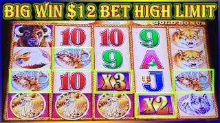 ★ BIG WIN $12 BET ★ HIGH LIMIT BUFFALO GOLD ★ SLOT MACHINE POKIES ★