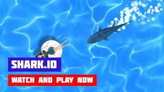 Shark.io · Game · Gameplay
