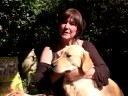 James Wellbeloved Natural Healthy Hypoallergenic Dog Food